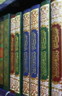 Ahadith Collection